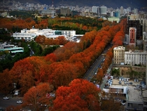 Autumn in Tehran