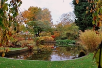 Autumn in the botanical garden