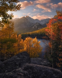 Autumn in the Park RMNP Colorado