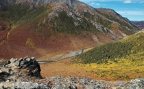 Autumn in the Savage River Valley  Denali National Park