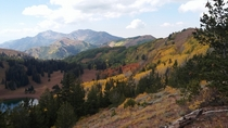 Autumn In The Wasatch