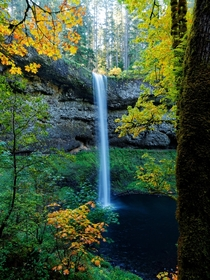 Autumn is the best time for taking in waterfalls Silver Falls State Park OR