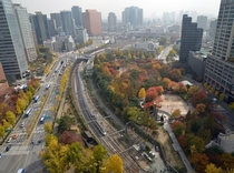 Autumn leaves next to railroads in downtown Seoul South Korea