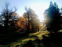 Autumn morning in the Friedenspark park of peace in Leipzig east germany
