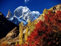 Autumn of Hunza Pakistan And Lady Finger Peak In Background