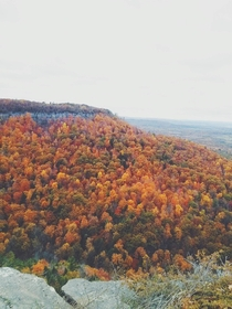 Autumn peak colors at Thacher Park NY