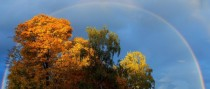 Autumn Rainbow in Seattle