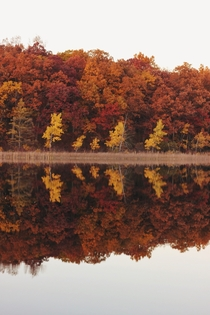 Autumn reflections in Michigan