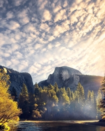 Autumn vibes and morning light within Yosemite NP California