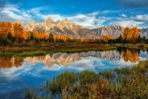 Autumnal Colors of the Tetons in Grand Teton National Park  by Jean-Francois Chaubard