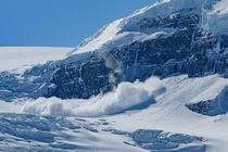 Avalanche on the Columbia Icefield Jasper National Park Canada
