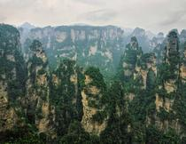 Avatar Mountains Zhangjiajie Drenched in the rain amp day clouded in mist but would come  times for these views  x
