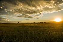 Awesome sunset in a field at Laramie Wyoming