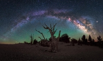 Awestruck Milky Way and Bristlecone Pine in California By Michael Shainblum