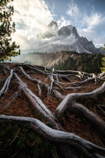 Back To The Roots Dolomites  IG konstantinkraemer
