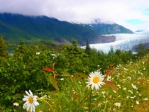Back when i worked on cruise ships part  Mendenhall Glacier Juneau Alaska