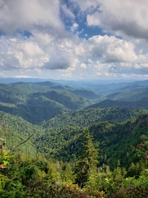 Backpacking in the Smokies doesnt get much better than this Great Smoky Mountains NP NC