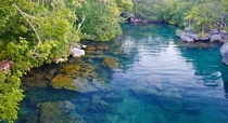 Backwaters of Xel-Ha Mexico