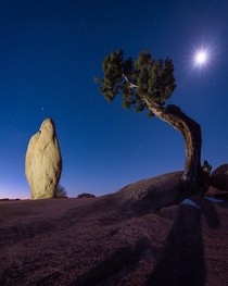 Balance Rock at twilight Jumbo Tanks Campground Joshua Tree National Park CA  Anyone else been there