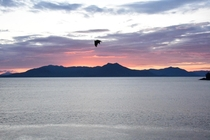 Bald Eagle over the Alaska sunset