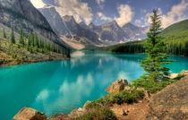 Banff National Park Alberta by Michael Harbison
