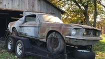 Barn find  Ford Mustang