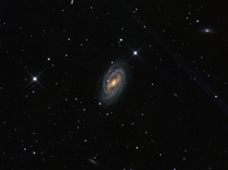 Barred Spiral Galaxy M