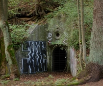 Bat Bunkers - the abandoned Polish-built bunkers from the s in Lithuania designated as refuge for endangered bat species by the Vilnius government They are listed as cultural heritage sites and protected from developers
