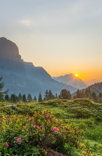 Bathed in Golden Light at AM as the Sun Rises Over the Italian Dolomites