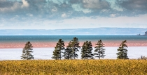 Bay of Fundy Worlds largest tides