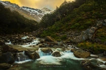 Bealey Valley Arthurs Pass National Park New Zealand photo by Vincent Frascello