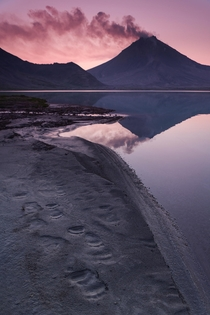 Bear pawprints line the shores of a lake at the foot of a volcano in Kamchatka Russia  photo by