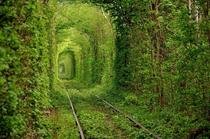 Beautiful Abandoned Railroad in the Ukraine