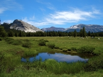Beautiful afternoon in Tuolumne meadows Yosemite National Park