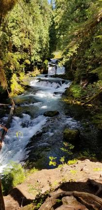 Beautiful cascade section of the McKenzie River