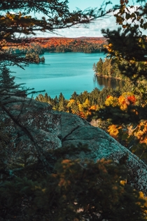 Beautiful fall colors Algonquin Park Canada