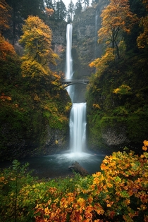 Beautiful fall colors on display at the iconic Multnomah Falls in the Columbia River Gorge