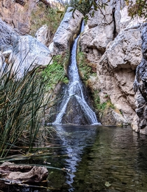 Beautiful little waterfall in the desert oasis - Darwin Falls Death Valley National Park