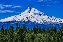 Beautiful Mt Hood Oregon The King of the Cascades