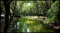 Beautiful park in Hangzhou China
