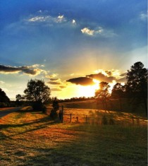 Beautiful sunset on the fields of Milledgeville Georgia USA