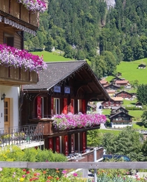 Beautifull houses in Switzerland x