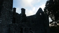 Bective Abbey Ireland built