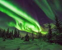 Before the northern lights season comes to an end here are some Northern Lights from the region of Troms Norway   IG glacionaut