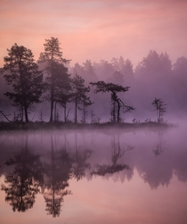 Before the sunrise at Lemmenjoki National Park Finland xOC