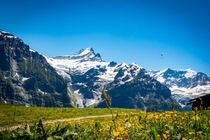 Bernese Alps First Grindelwald