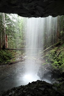 Best seat in the house - Gifford Pinchot National Forest