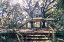 Big Ass Treehouse in Brooksville Floridax