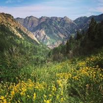 Big Cottonwood Canyon - SLC UT