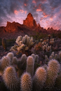 Big Red by Victor Carreiro An image of the Kofa Mountains of Western Arizona Those cactus are pretty but evil
